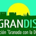 dislexia granada